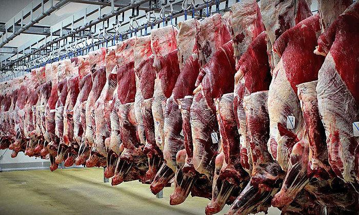 مصوبه جدید دولت برای کاهش قیمت گوشت قرمز   واردات گوشت بدون تعرفه گمرکی