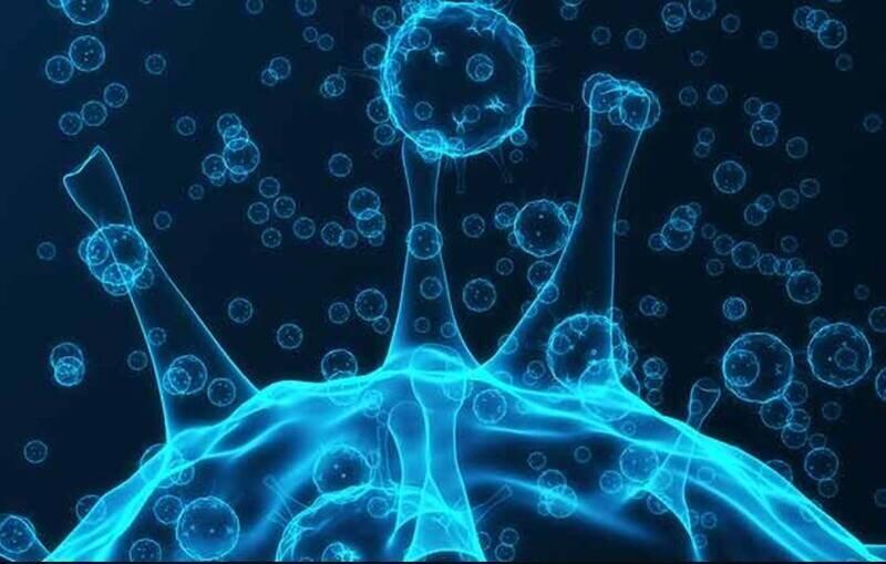 هشدار | شایعترین راه انتقال ویروس کرونا
