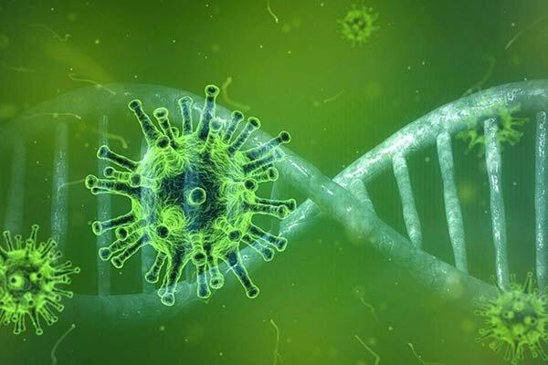 ماندگاری ویروس کرونا چه مدت است | روی بینی و پوست یا در سرما و گرما